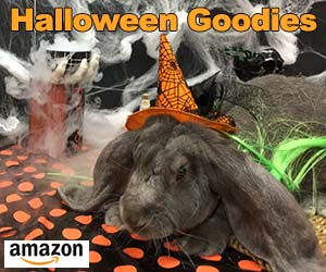 Amazon Halloween Candy